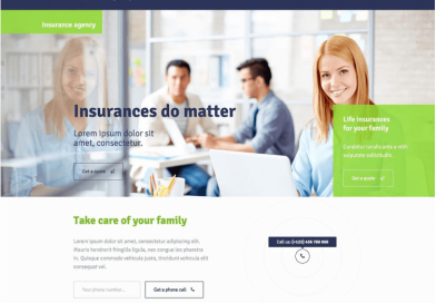 보험 사업을 위한 웹사이트 워드프레스테마 추천