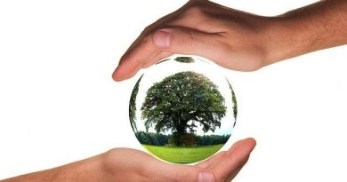 친환경 수소차 관련주